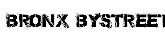 Bronx Bystreets