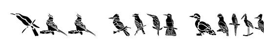 Nias Bird