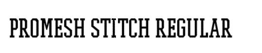 PROMESH Stitch