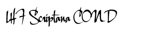 LHF Scriptana COND